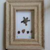 Tortuga Pebble Art