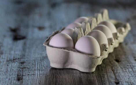 Huevo de Pastoreo