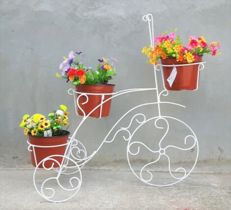Triciclo Trikcy